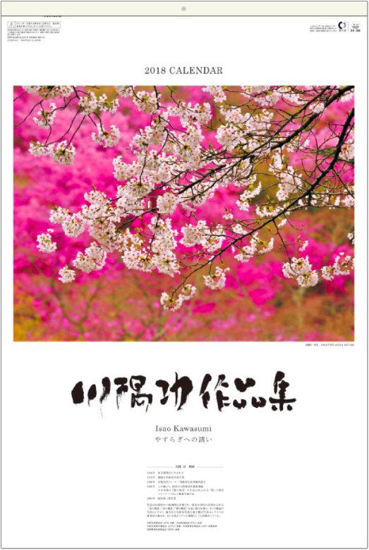 表紙 川隅功作品集(フィルムカレンダー) 2018年カレンダーの画像
