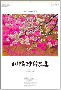 川隅功作品集(フィルムカレンダー) 2018年カレンダー