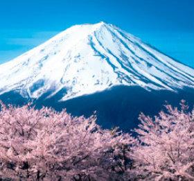 画像:3-4月 桜と富士山(山梨) 富士山(フィルムカレンダー) 2018年カレンダー