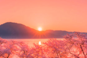 画像:4月 海津大崎(滋賀) 輝く太陽 2018年カレンダー