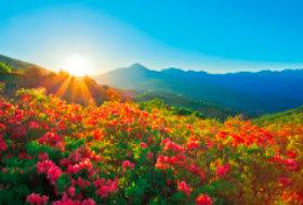 画像:6月 車山高原(長野) 輝く太陽 2018年カレンダー
