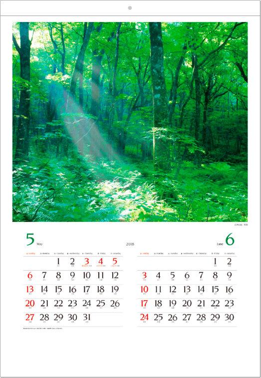 画像:5-6月 白神山地(青森) 美しい緑 2018年カレンダー
