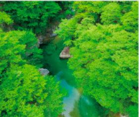画像:9-10月 付知峡(岐阜) 美しい緑 2018年カレンダー