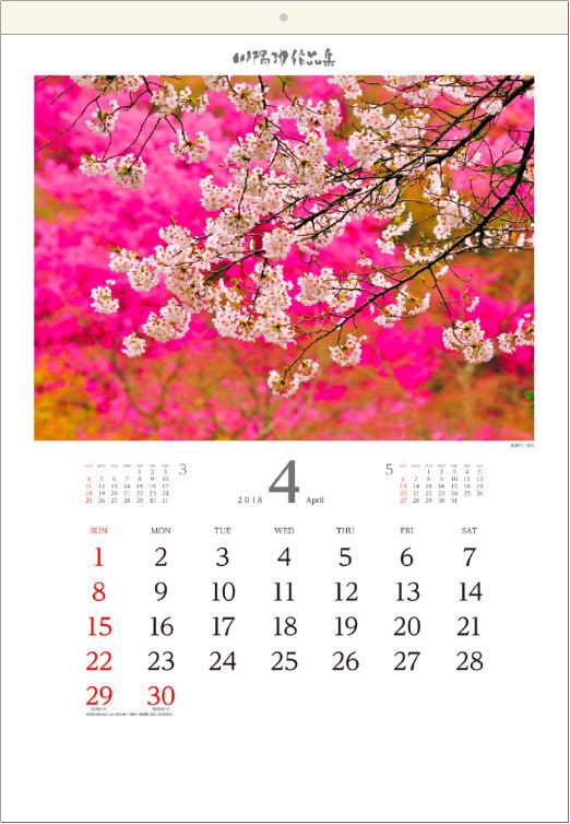 画像:4月 長瀞町(埼玉) 川隅功作品集 2018年カレンダー