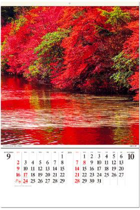 画像:9-10月 白駒の池(長野) 美しい水辺(フィルムカレンダー) 2018年カレンダー