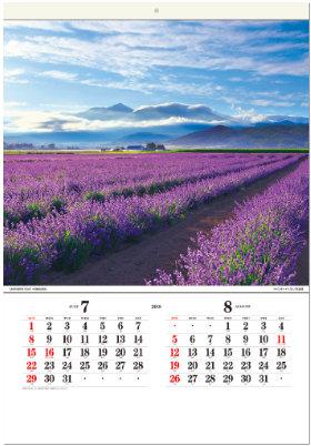 画像:7-8月 ラベンダーイースト(北海道) 日本の詩情(フィルムカレンダー・小) 2018年カレンダー