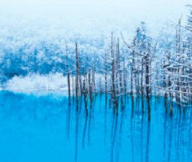 画像:11-12月 青い池(北海道) 日本の詩情(フィルムカレンダー・小) 2018年カレンダー