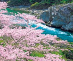 画像:3-4月 大歩危峡(徳島) せせらぎの詩(フィルムカレンダー・小) 2018年カレンダー