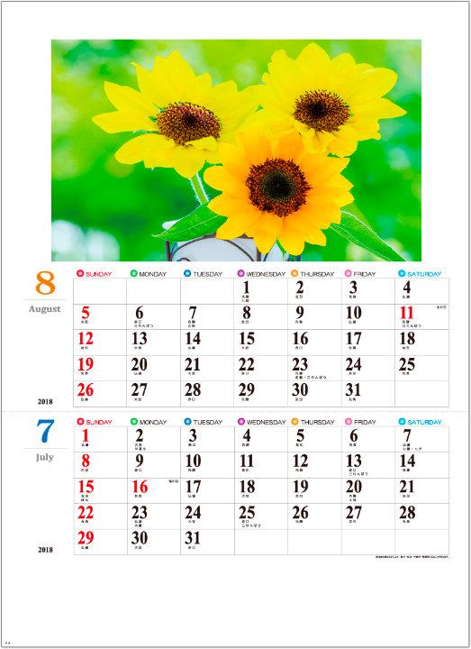 画像:7-8月 カラフルフラワー 2018年カレンダー
