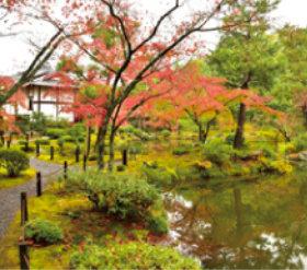 画像:11月 等持院(京都) 庭の詩情 2018年カレンダー