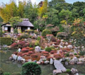 画像:2月 等持院(京都) 庭の詩情 2018年カレンダー