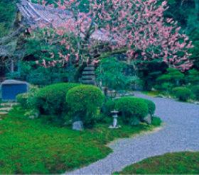 画像:3月 新善光寺(京都) 庭の詩情 2018年カレンダー