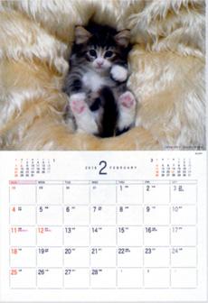 画像:2月 ノルウェージャン・フォレストキャット Dog&Cat 2018年カレンダー
