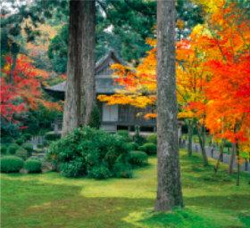 画像:10月 三千院(京都) 日本の美 2018年カレンダー