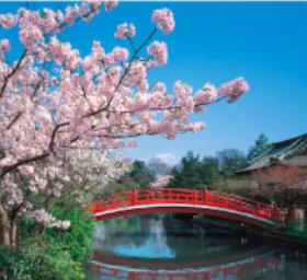 画像:3月 神泉苑(京都) 日本の美 2018年カレンダー