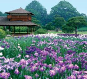 画像:6月 後楽園(岡山) 日本の美 2018年カレンダー