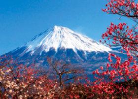 画像:2月 岩本山公園より(静岡) 富士十二景 2018年カレンダー
