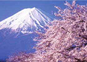 画像:4月 富士河口湖町桜とより富士山(山梨) 富士十二景 2018年カレンダー