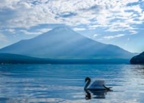 画像:9月 山中湖より(山梨) 富士十二景 2018年カレンダー