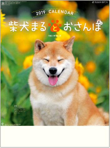 表紙 柴犬まるとおさんぽ 2019年カレンダーの画像