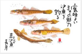 画像: 魚彩時記 2019年カレンダー