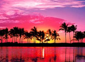 画像:ハワイ パラダイス 2019年カレンダー