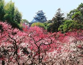 画像:岡山県 岡山城 ザ・日本 2019年カレンダー