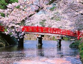 画像:弘前公園の橋と桜 ザ・日本 2019年カレンダー