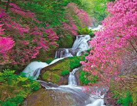 画像:栃木県 竜頭の滝 ザ・日本 2019年カレンダー