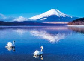 画像:山梨県山中湖村 フォーエバージャパン 2019年カレンダー