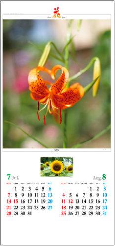 画像: 花 (Flower Scene) 2019年カレンダー