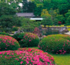 画像:清流園 庭(フィルムカレンダー) 2019年カレンダー