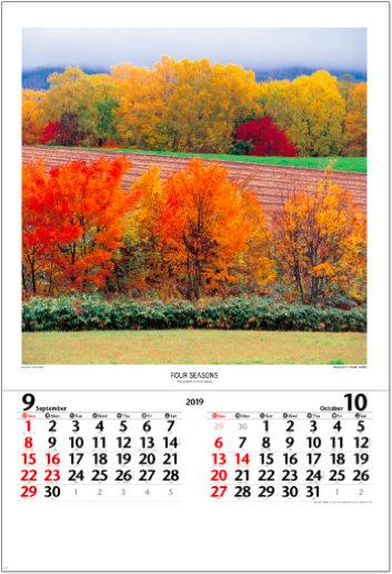 画像:北海道・美瑛町 秋の丘の木々 四季 前田真三・前田晃 (フィルムカレンダー) 2019年カレンダー