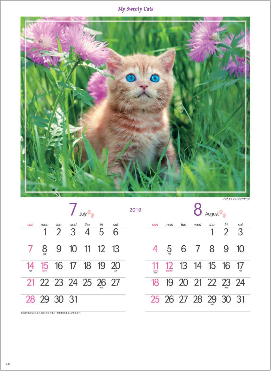 画像: マイスウィーティーキャット 2019年カレンダー