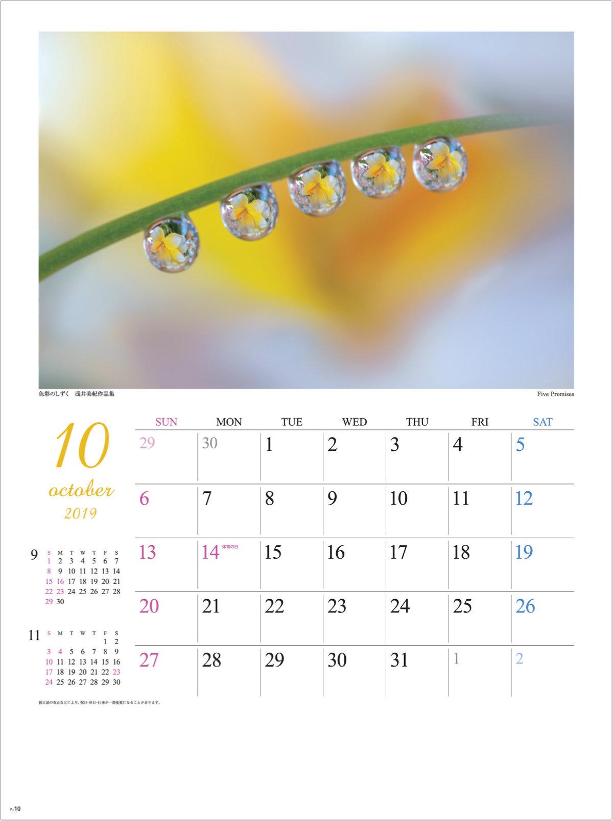 画像:浅井美紀 写真作品「Five Promises」 色彩のしずく・浅井美紀作品集 2019年カレンダー