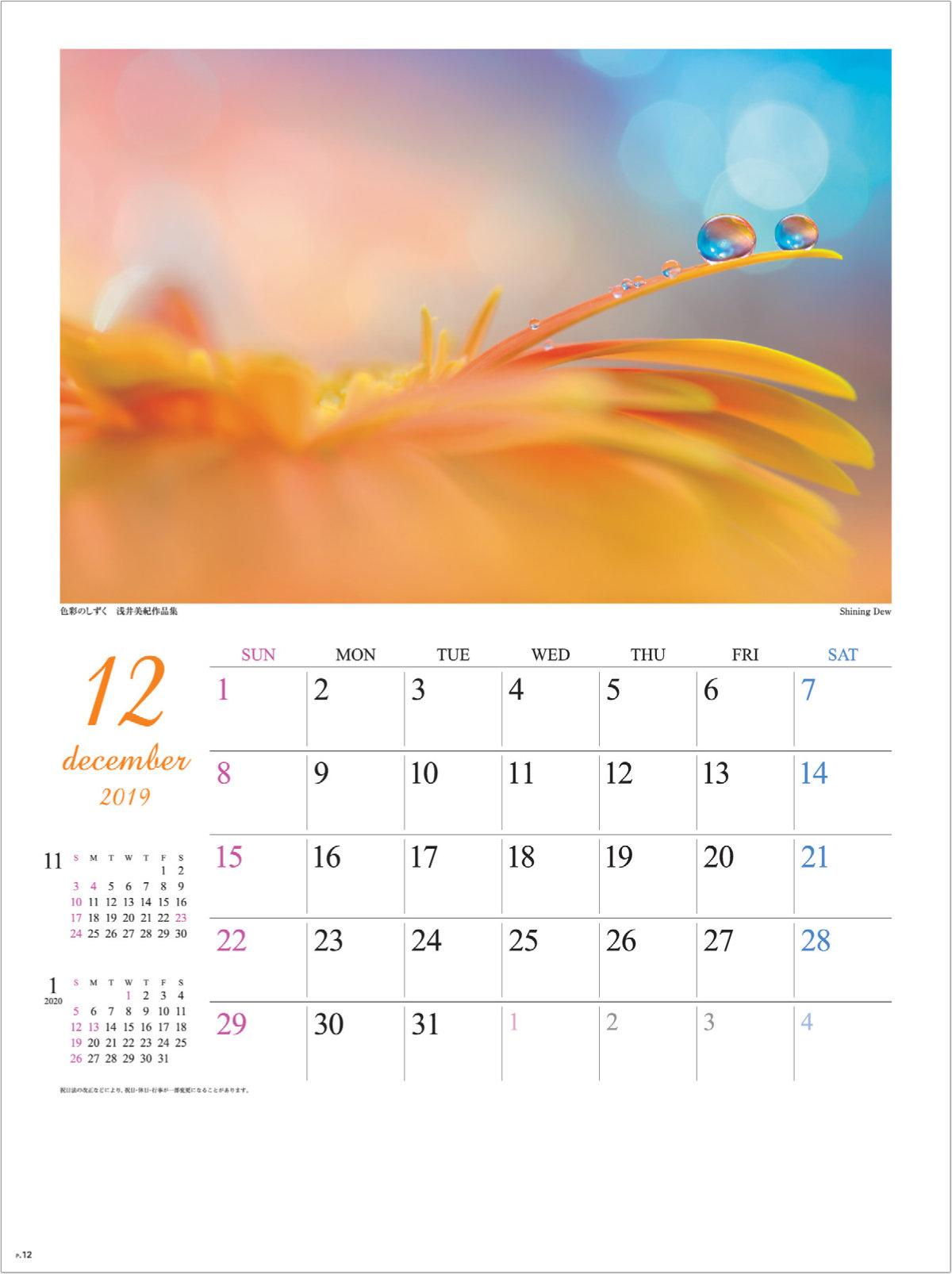 画像:浅井美紀 写真作品「Shining Dew」 色彩のしずく・浅井美紀作品集 2019年カレンダー