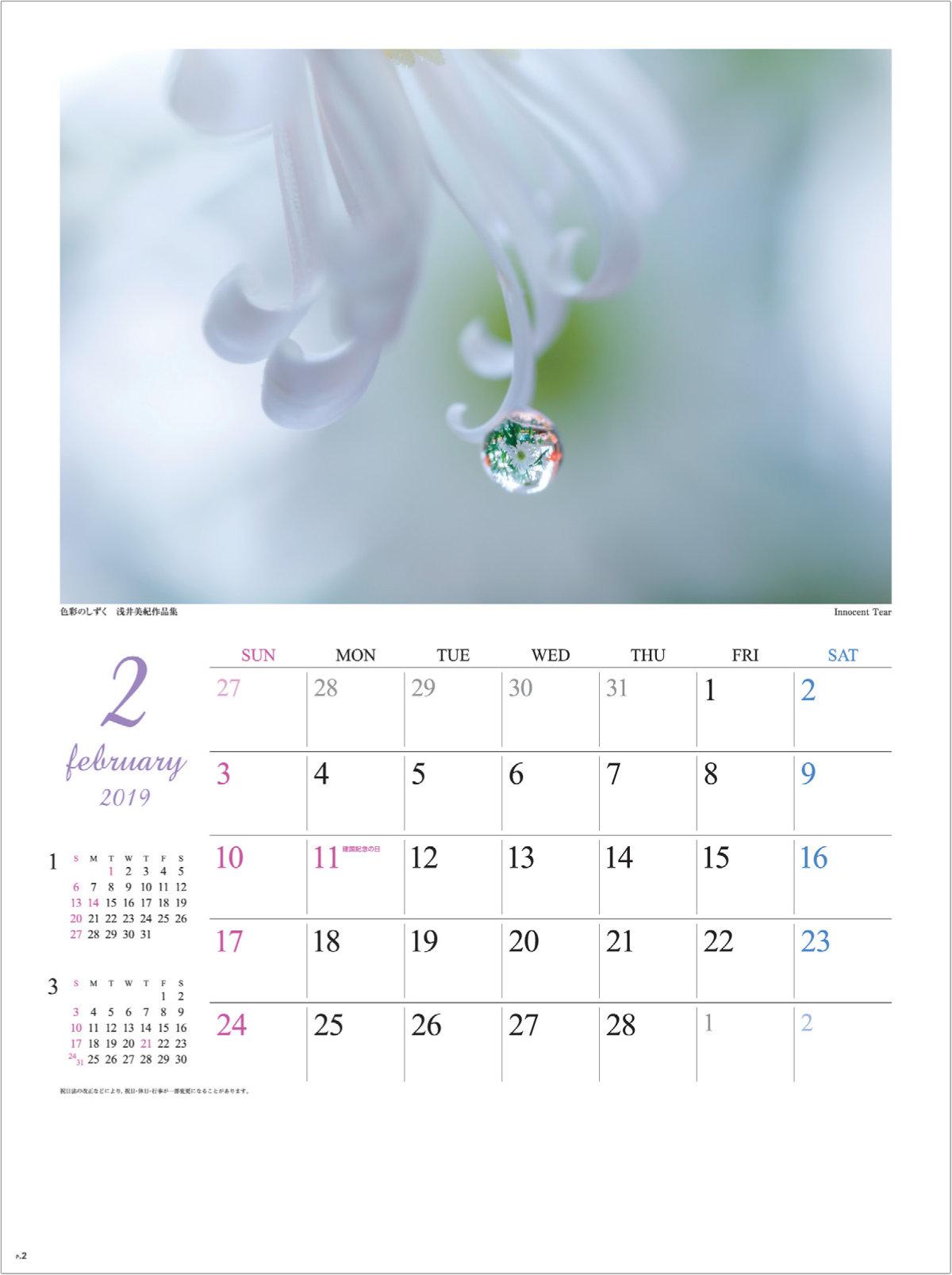 画像:浅井美紀 写真作品「Innocent Tear」 色彩のしずく・浅井美紀作品集 2019年カレンダー