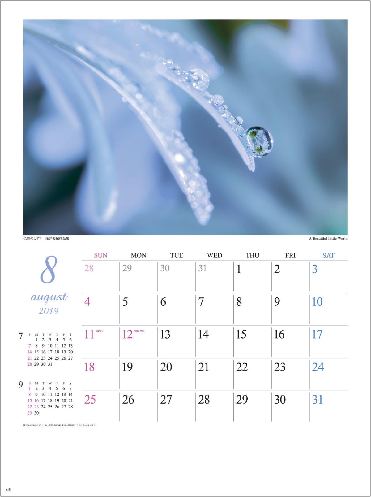 画像:浅井美紀 写真作品「A Beautiful Little World」 色彩のしずく・浅井美紀作品集 2019年カレンダー