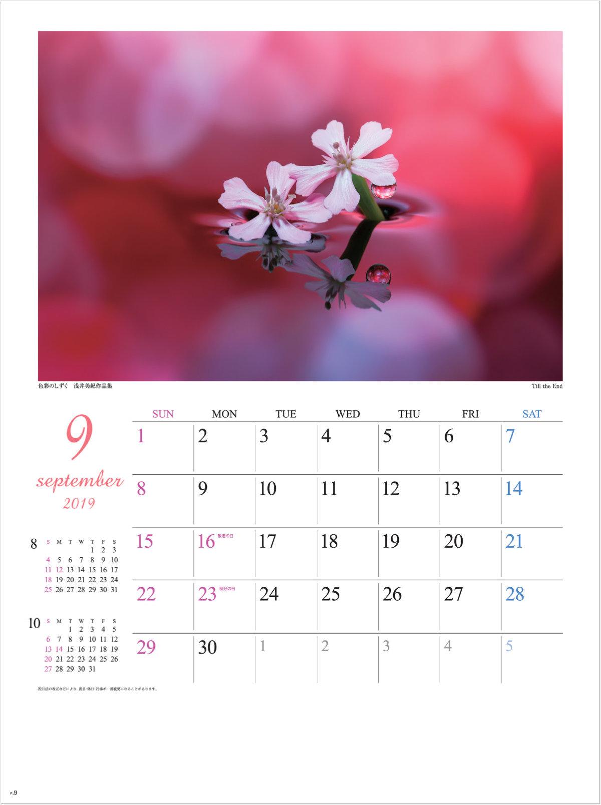 画像:浅井美紀 写真作品「Till the End」 色彩のしずく・浅井美紀作品集 2019年カレンダー