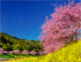 画像:広島県 竜王山より 彩り日本(12月はじまり) 2019年カレンダー
