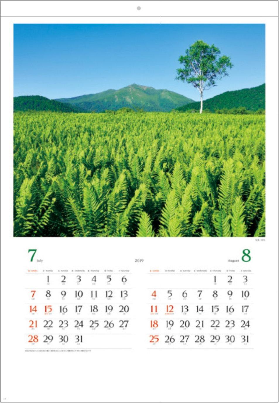 画像:群馬県 尾瀬 美しい緑 2019年カレンダー