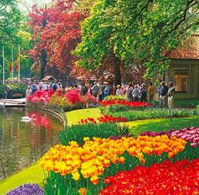 画像:オランダ キューケンホフ公園 ワイドヨーロッパ(フィルムカレンダー) 2019年カレンダー