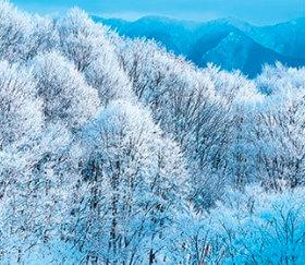 画像:福島県 北塩原村の雪景色 日本の詩情(フィルムカレンダー・小) 2019年カレンダー