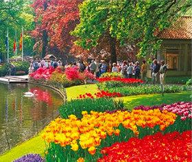 画像:キューケンホフ公園(オランダ) 世界の名勝(フィルムカレンダー・小) 2019年カレンダー