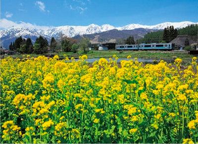 画像:大糸線 ローカル線紀行 2019年カレンダー