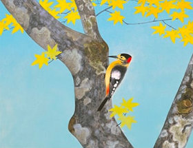画像:金島桂華 作品「啄木鳥」 日本画巨匠名品集 2019年カレンダー