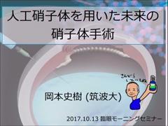 人工硝子体を用いた未来の硝子体手術