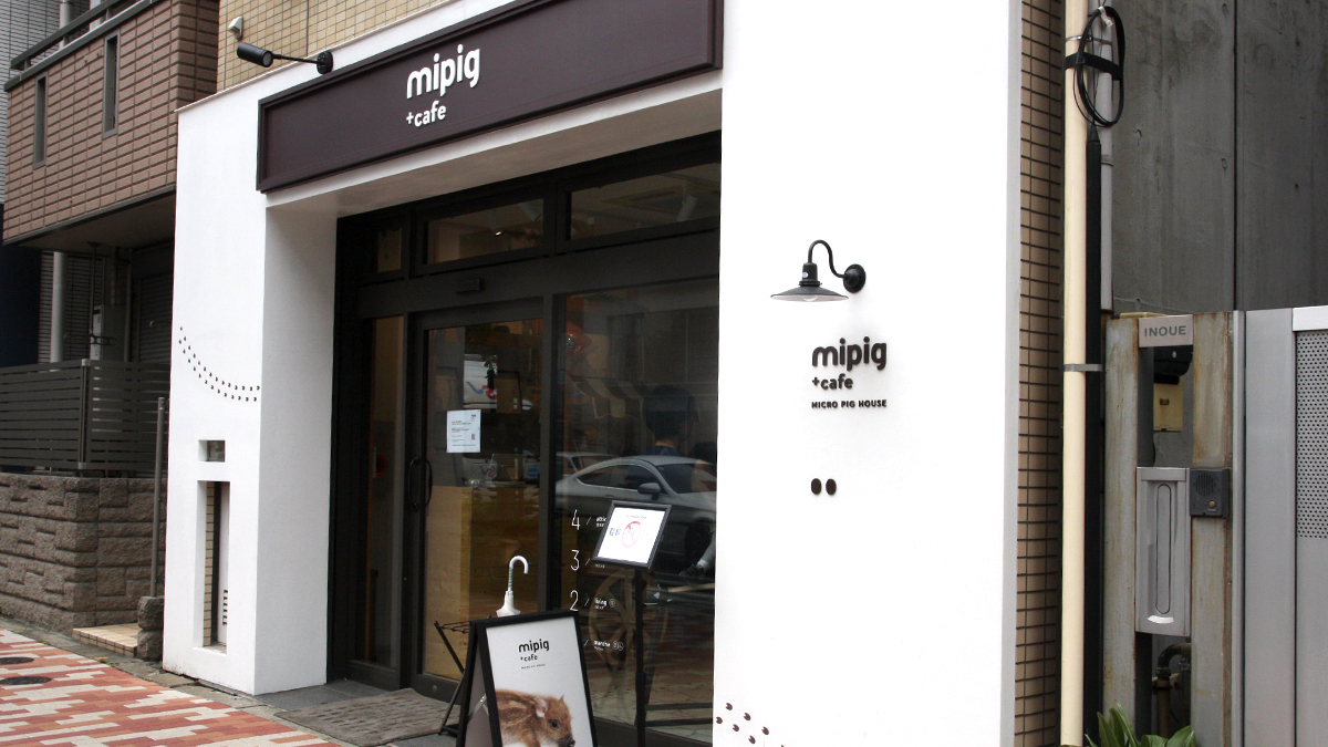 mipig cafe(マイピッグカフェ)目黒店 外観