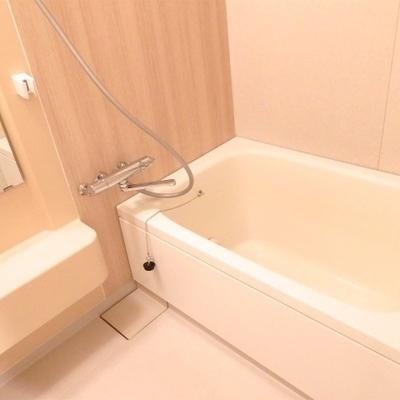 お風呂は既存ですがキレイです。シート張り替えています