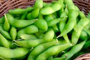 【要予約】枝豆